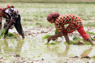 Food trade drains global water sources at 'alarming' rates