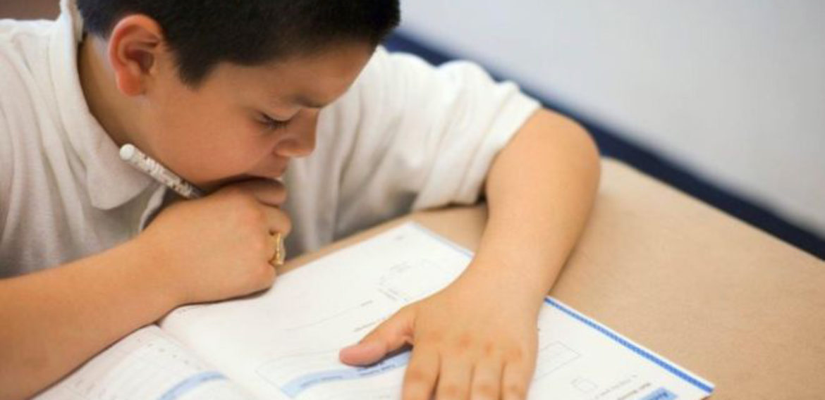 Reform 'high stakes' primary tests, MPs urge